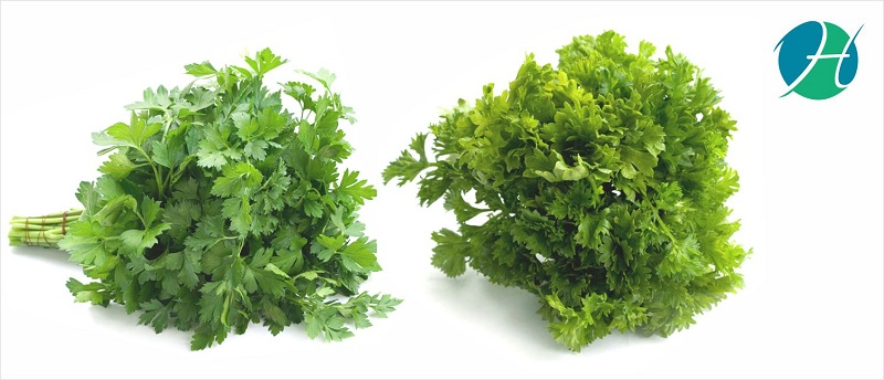 Benefits of Parsley
