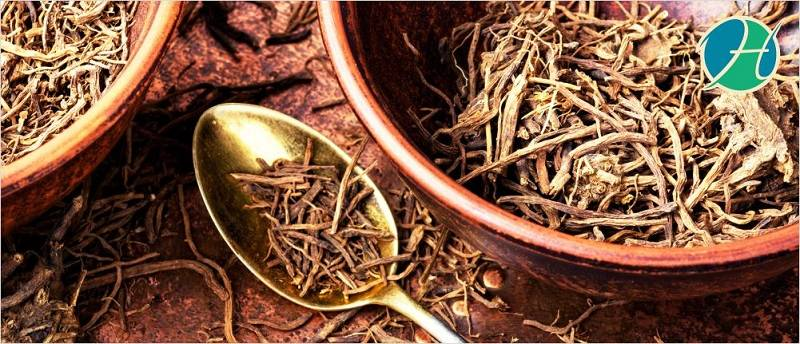 Benefits of Valerian Root