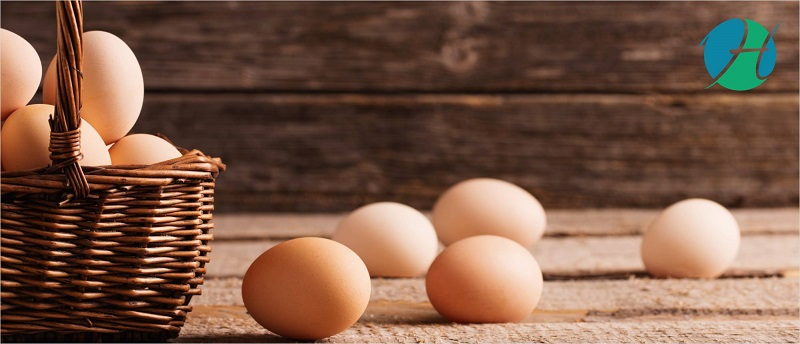 Sunny Side Up or Sunny Side Down: Or Is It All Scrambled?