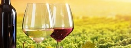 Small thumb cigarette cancer risk equivalent found in wine   banner