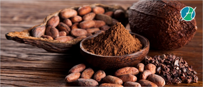 Four health benefits of cacao nibs   banner