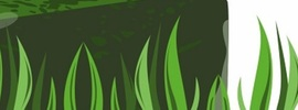Small thumb blue green algae   banner