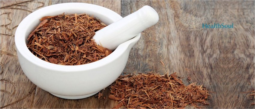 Catuaba Bark Benefits