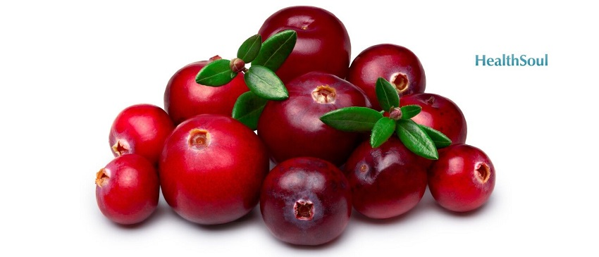 Uva Ursi or Bearberry Benefits