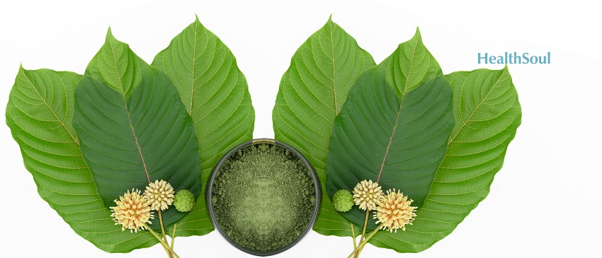 Best Kratom Strains For Boosting Energy