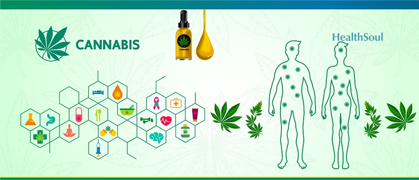 6 Positive Effects of Cannabis on the Body and Mind