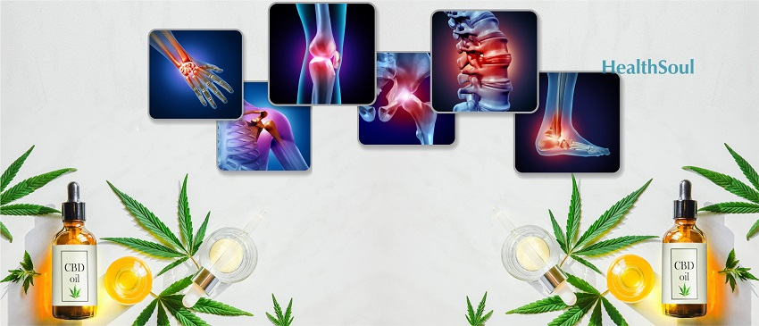 Cannabinoids could relieve arthritis pain tips to get started with cbd oil