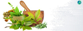 Learn About Ayurveda Doctors: Conditions They Treat and When to see one?