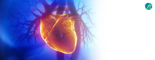 Heart Valve Problems: Symptoms and Treatment