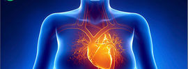Small thumb women with breast cancer haveincreased risk of atrial fibrillation 1