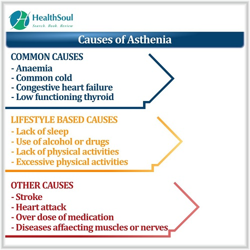 Causes of Asthenia | HealthSoul