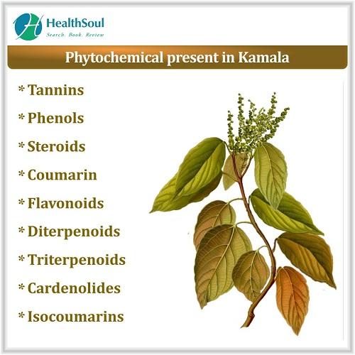 Phytochemical Present in Kamala | HealthSoul