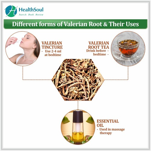 Different Forms of Valerian Root & Their Uses | HealthSoul