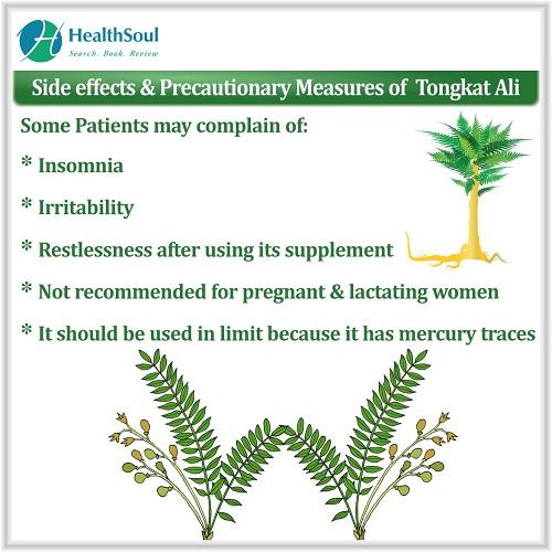 Side Effects & Precautionary Measures of Tongkat Ali   HealthSoul