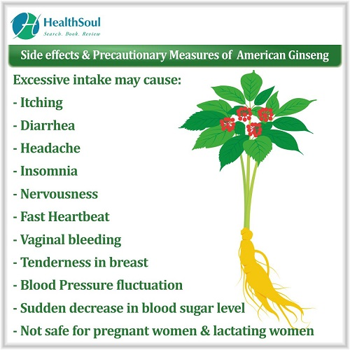 Side effects & Precautionary Measures of American Ginseng | HealthSoul