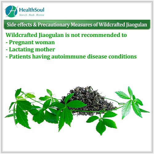 Side effects & Precautionary Measures of Wildcrafted jiaogulan   HealthSoul