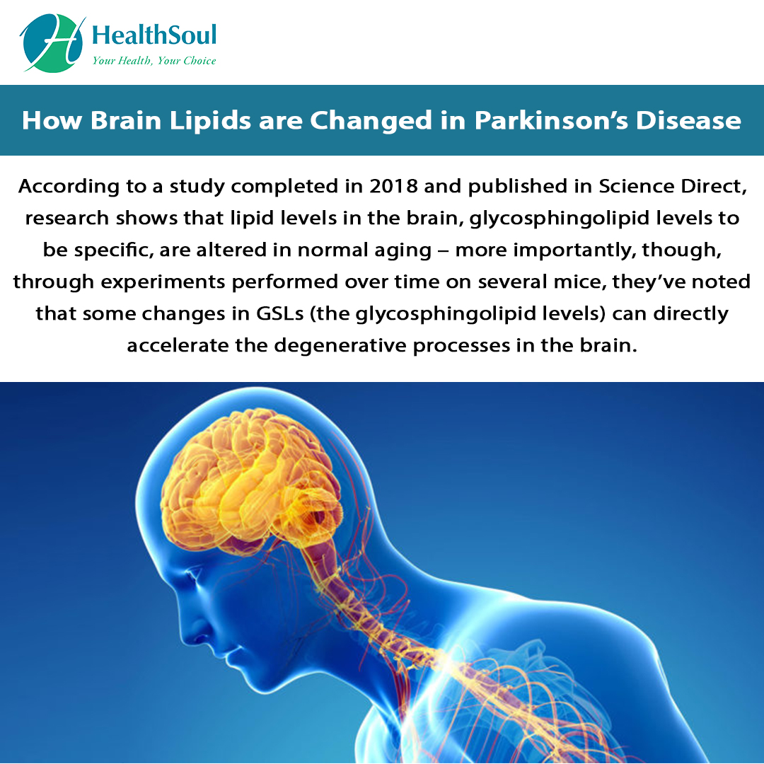 How Brain lipids are changed in Parkinson's disease.
