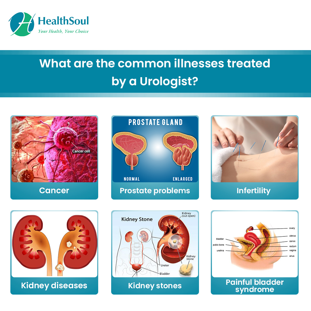 What are the commom Illnesses treated by a Urologist?