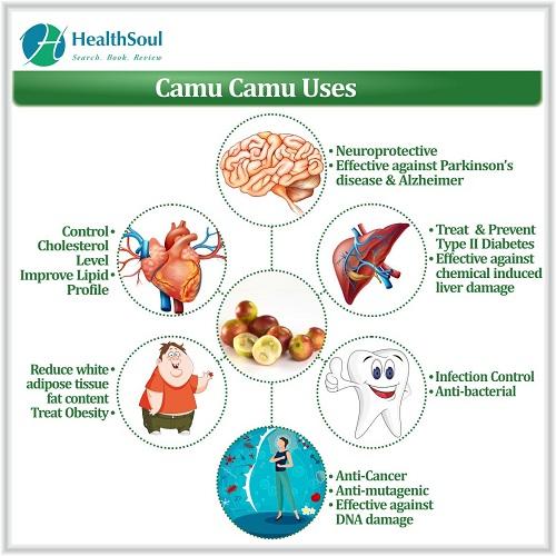 Camu Camu Uses | HealthSoul