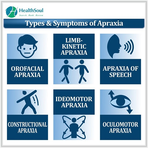 Types & Symptoms of Apraxia | HealthSoul