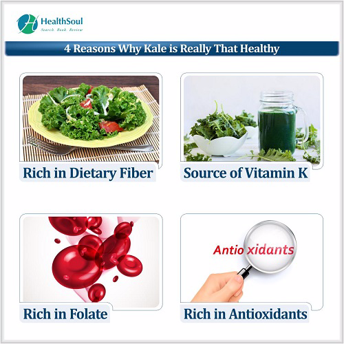 $ Reasons Why Kale is Really That Healthy | HealthSoul