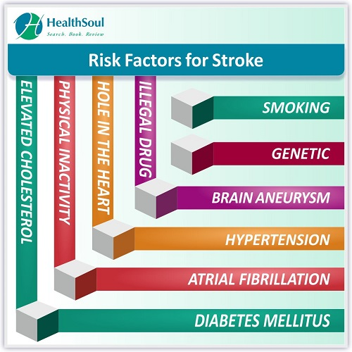 Risk Factors for Stroke   HealthSoul