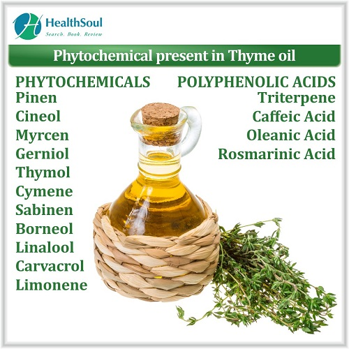 Phytochemical Present in Thyme oil | HealthSoul