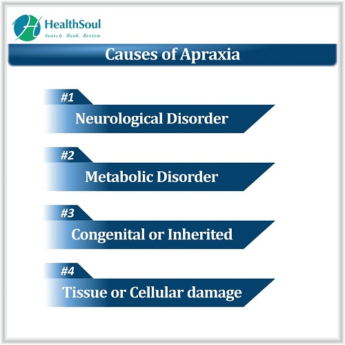 Causes of Apraxia | HealthSoul
