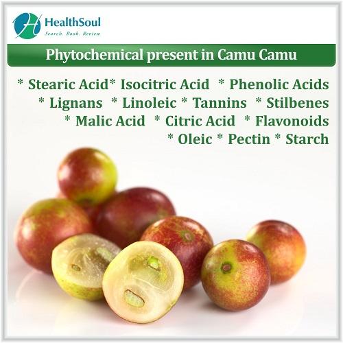 Phytochemical Present in Camu Camu | HealthSoul