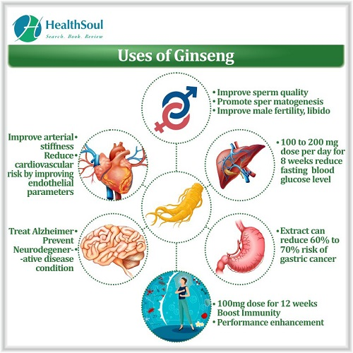 Uses of Ginseng | HealthSoul