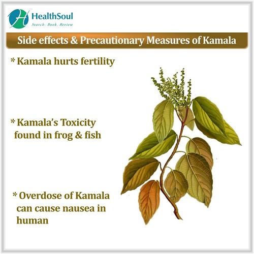 Side Effects & Precautionary Measures of Kamala | HealthSoul