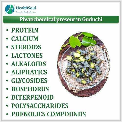 Phytochemical Present in Guduchi | HealthSoul