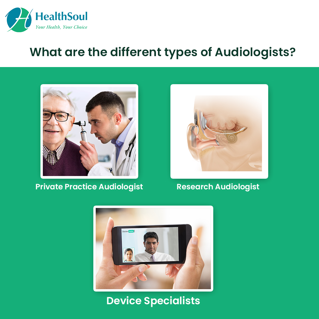 What are the different types of Audiologists?
