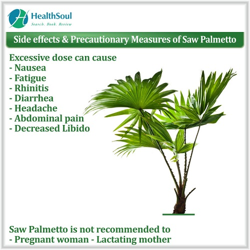 Side Effects & Precautionary Measures of Saw Palmetto | HealthSoul