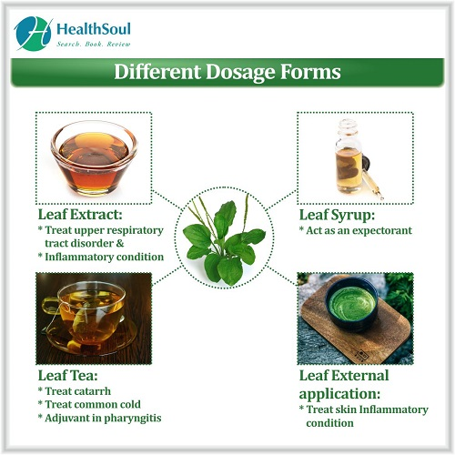 Different Dosage Forms | HealthSoul