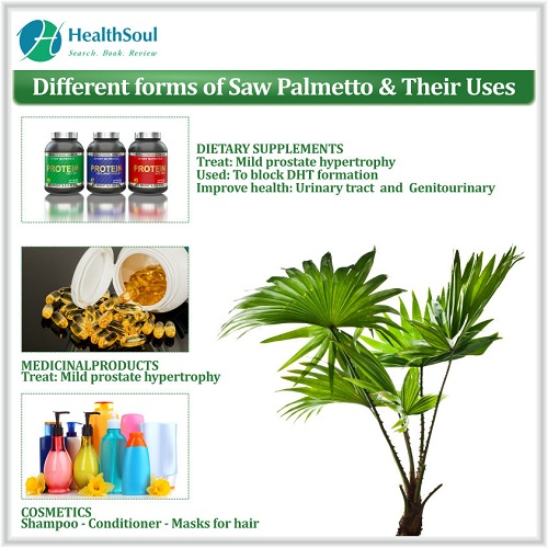 Different Forms of Saw Palmetto & Their Uses | Healthsoul