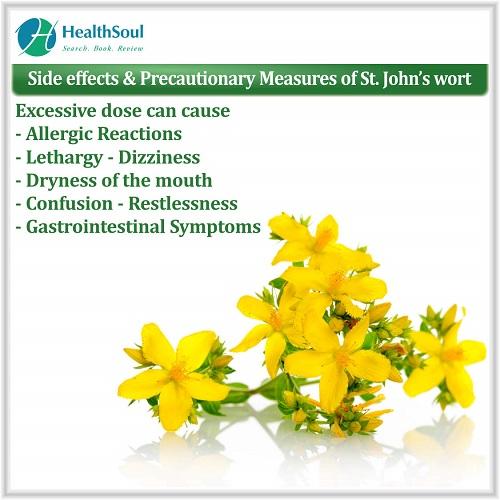 Side effects & Precautionary Measures of St. john's wort | HealthSoul