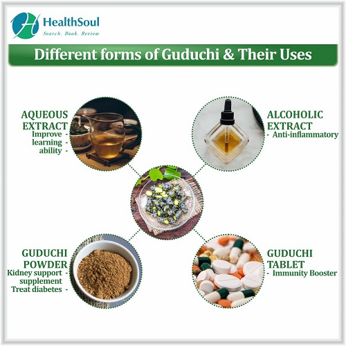 Different forms of Guduchi & Their Uses | HealthSoul