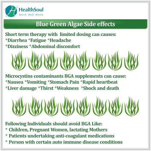 Blue Green Algae Side Effects | HealthSoul